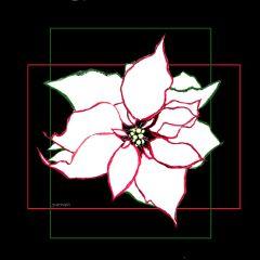 freetoedit flower pointsettia outline christmas