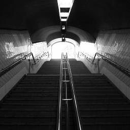 stairs photography photographylife photography_life blackandwhite freetoedit