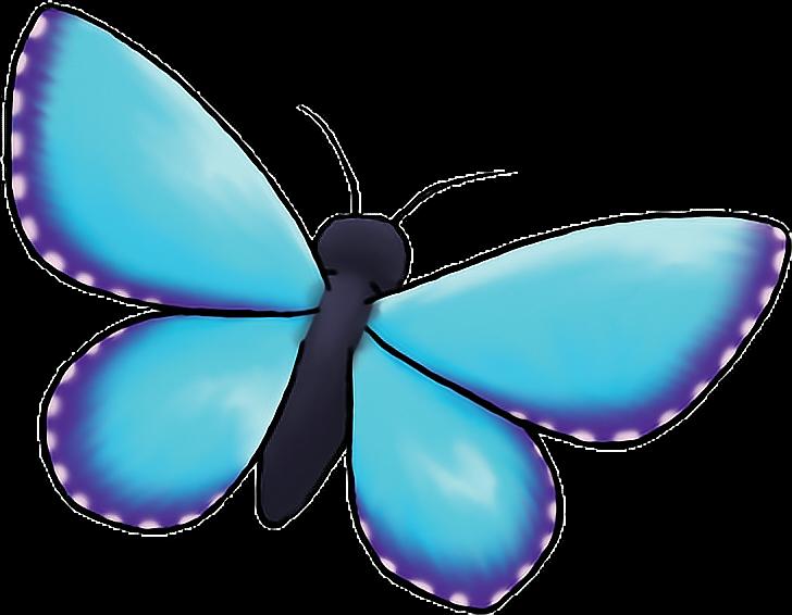 #butterfly #blue