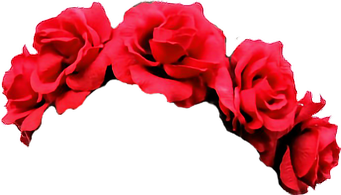 #rose #flower #png #snapchat #cute