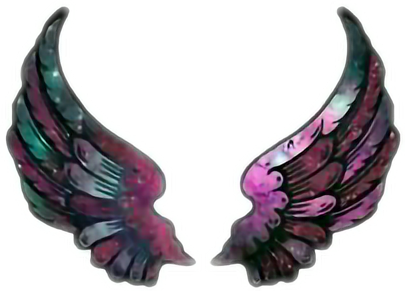 #wings #colorful #cute #galaxy