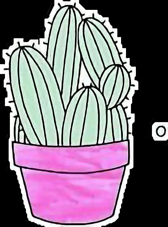 #kaktus_liebe