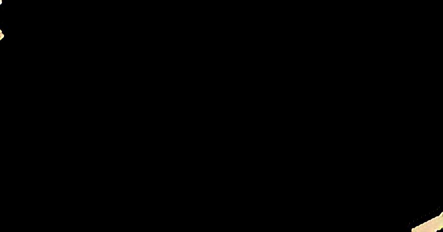 Ari motor