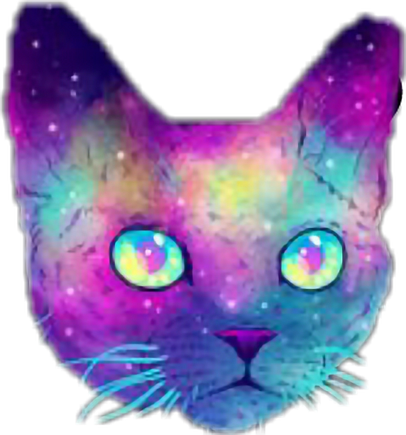 #galaxy #cats #colorful