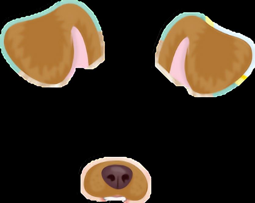 Fashion Dog Tags For Pets