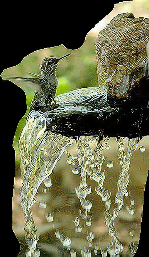 #vogel