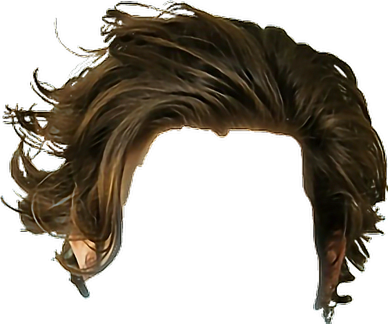 Hair Haircut Brown Hairstyle Mens Remixit