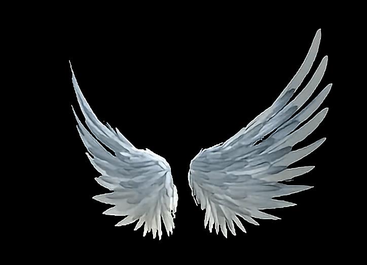 Крылья картинки анимация
